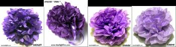 camaieu violet